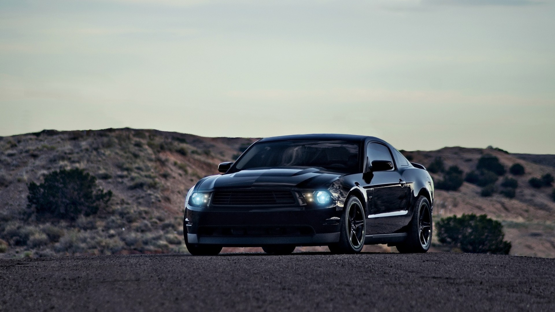 Ford Mustang GT500 black wallpapers and images   wallpapers pictures 1920x1080