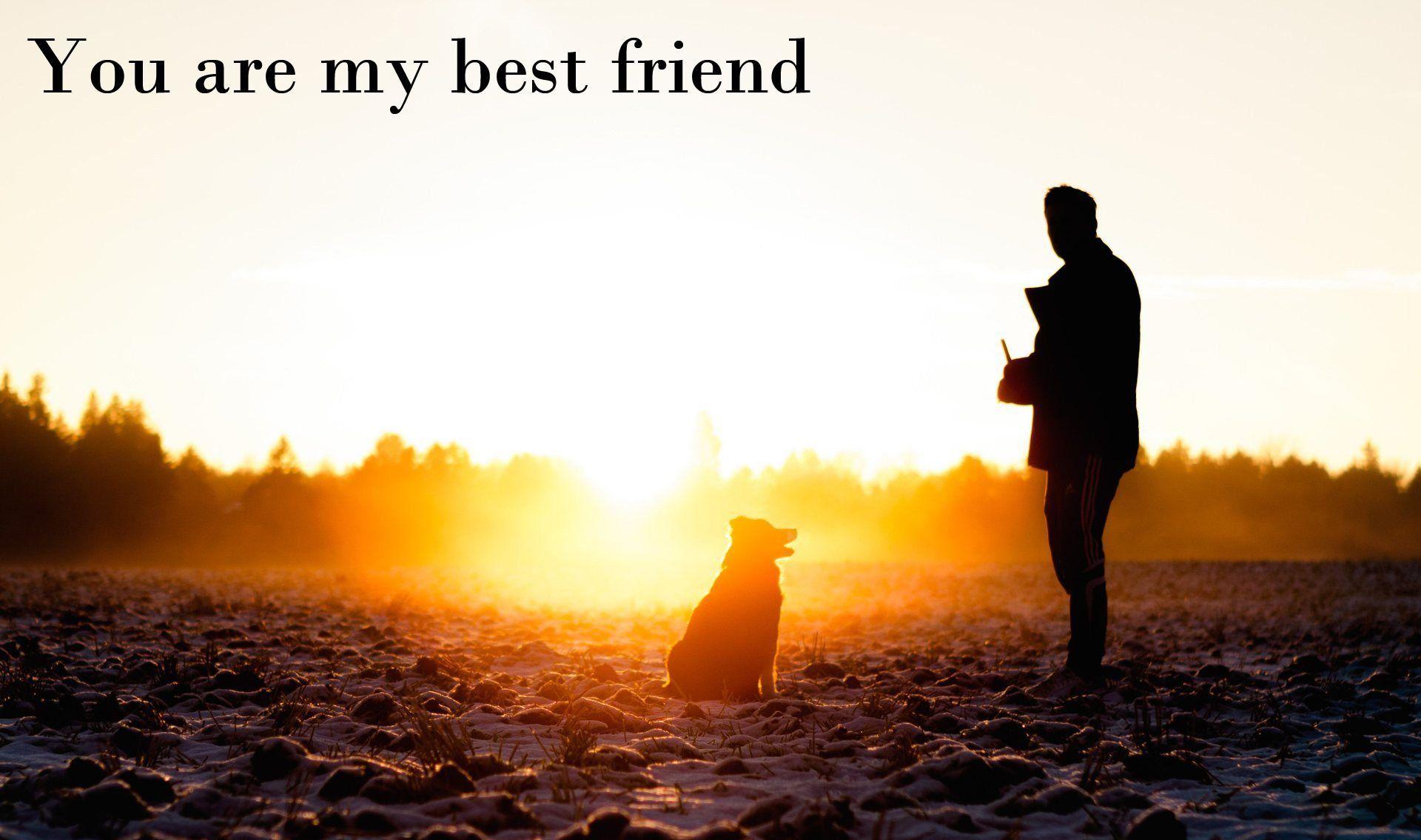 My best friend is my dog wallpaper 1920x1135