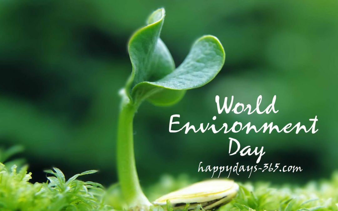 World Environment Day   June 5 2019 Happy Days 365 1080x675