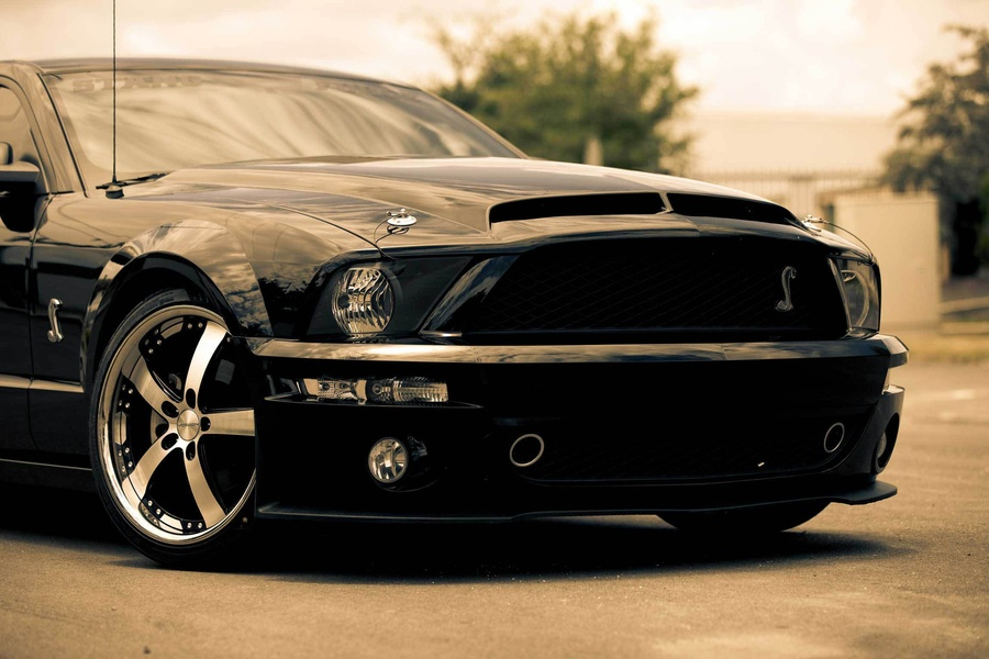 Mustang Cobra Wallpapers The Art Mad Wallpapers 900x600