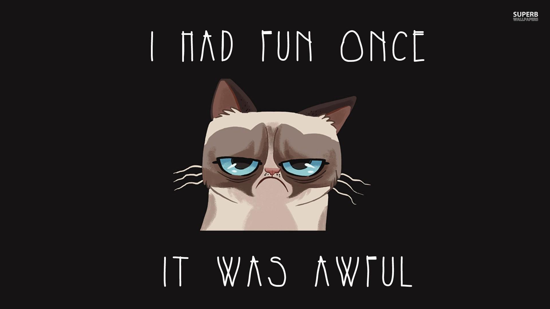Grumpy cat once had fun 1920x1080