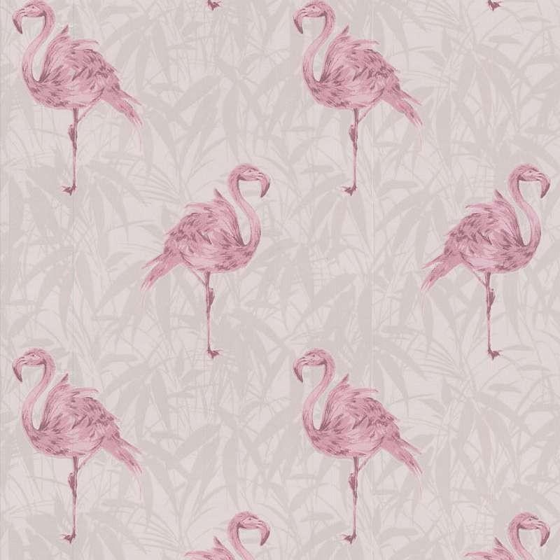 Flamingo Pink Wallpaper Pink Wallpaper Kitchen Wallpaper 800x800