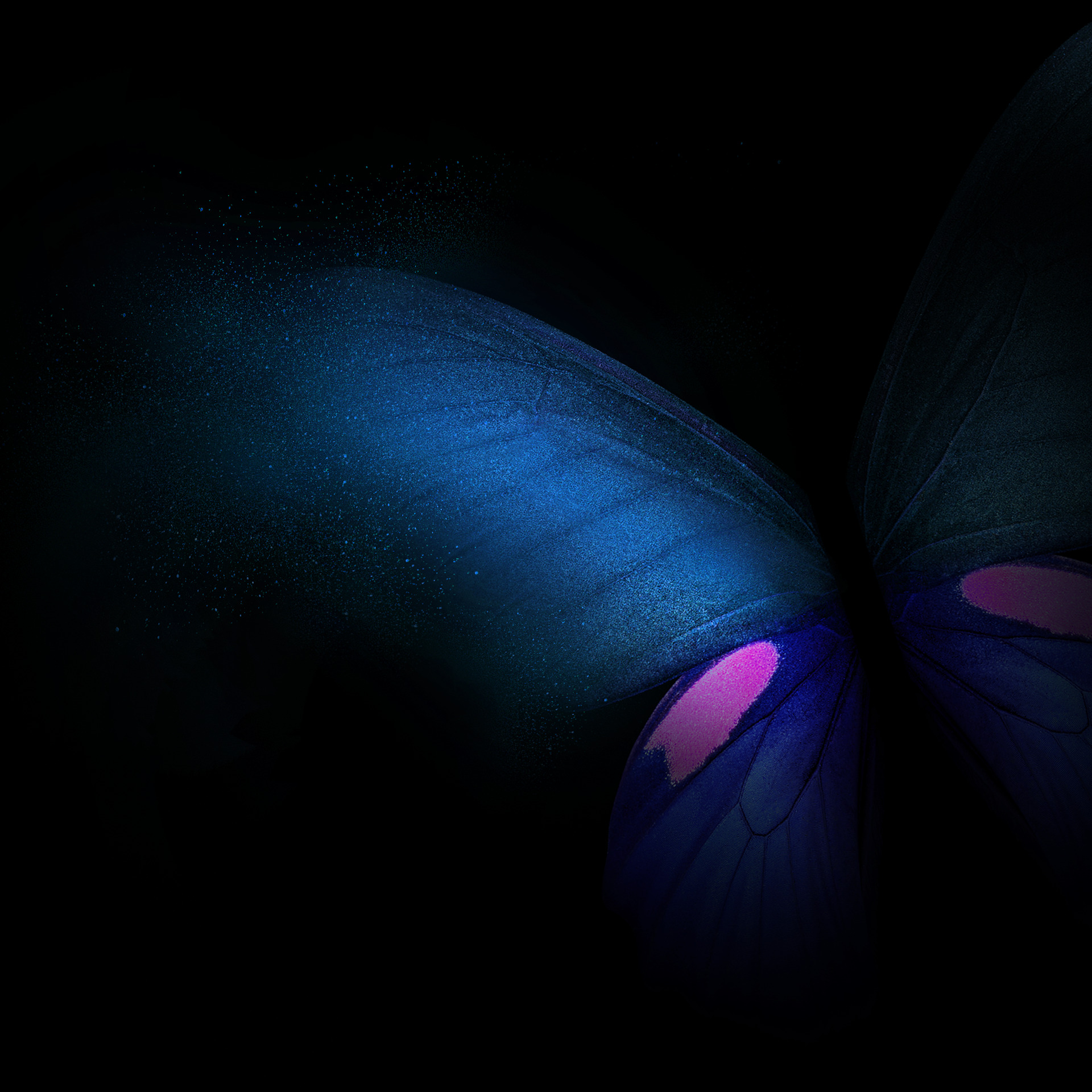 Download Samsung Galaxy Fold wallpapers in full resolution right here 1920x1920
