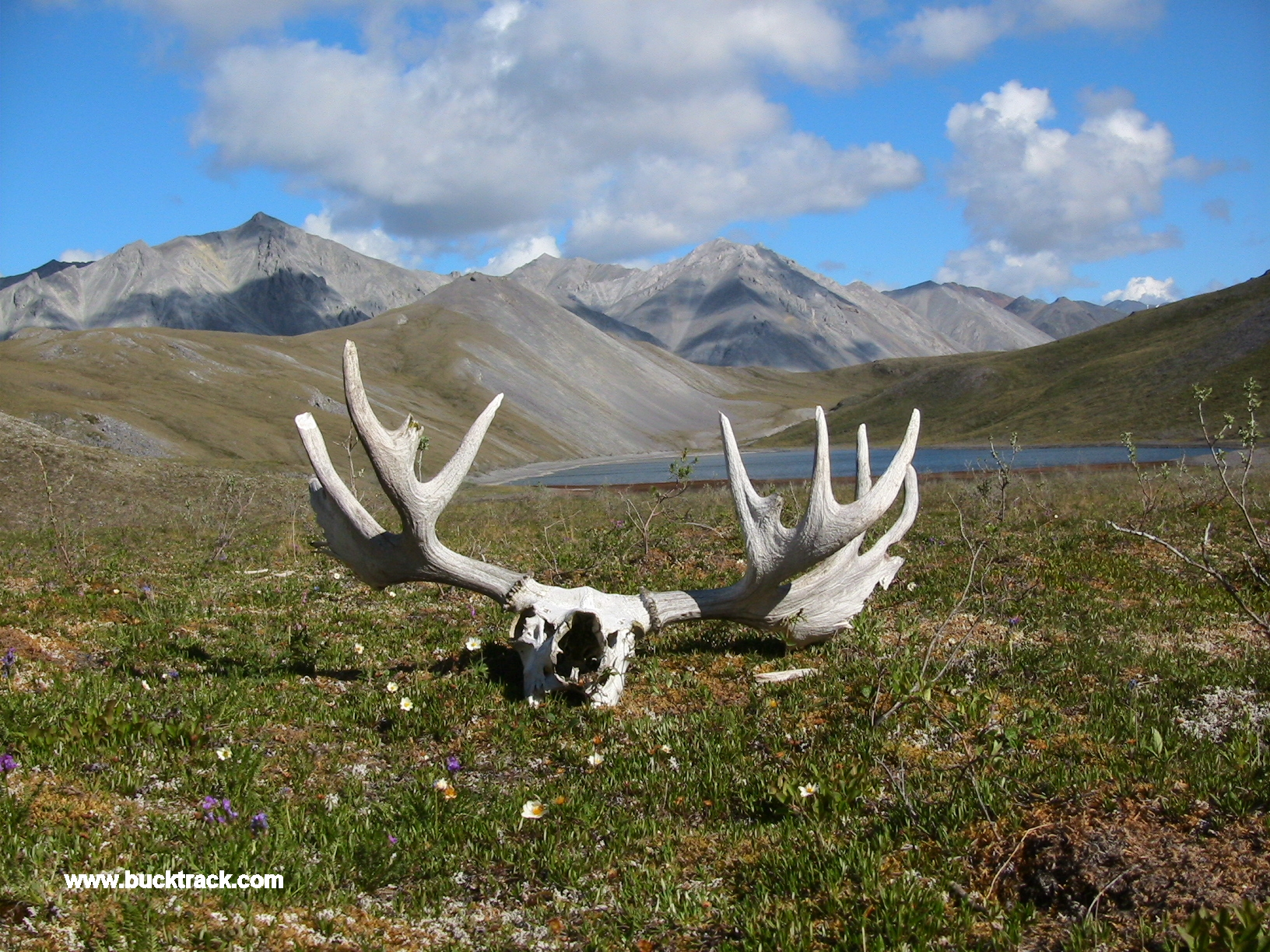Alaska Desktop Backgrounds Outdoor Adventures 1632x1224
