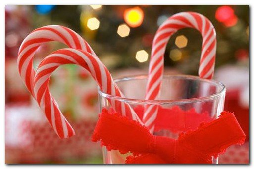Candy Canes Wallpapers Candy Cane Christmas Christmas Candy Cane 513x341