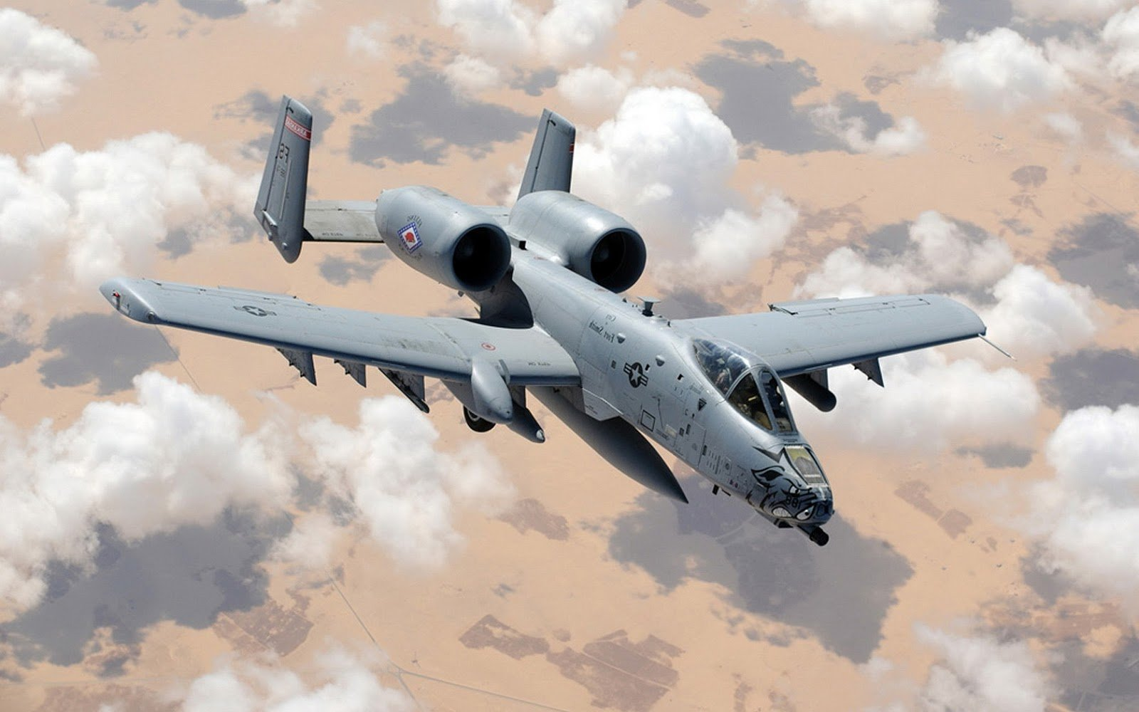 A10 Warthog Wallpaper Hd galleryhipcom   The Hippest 1600x1000