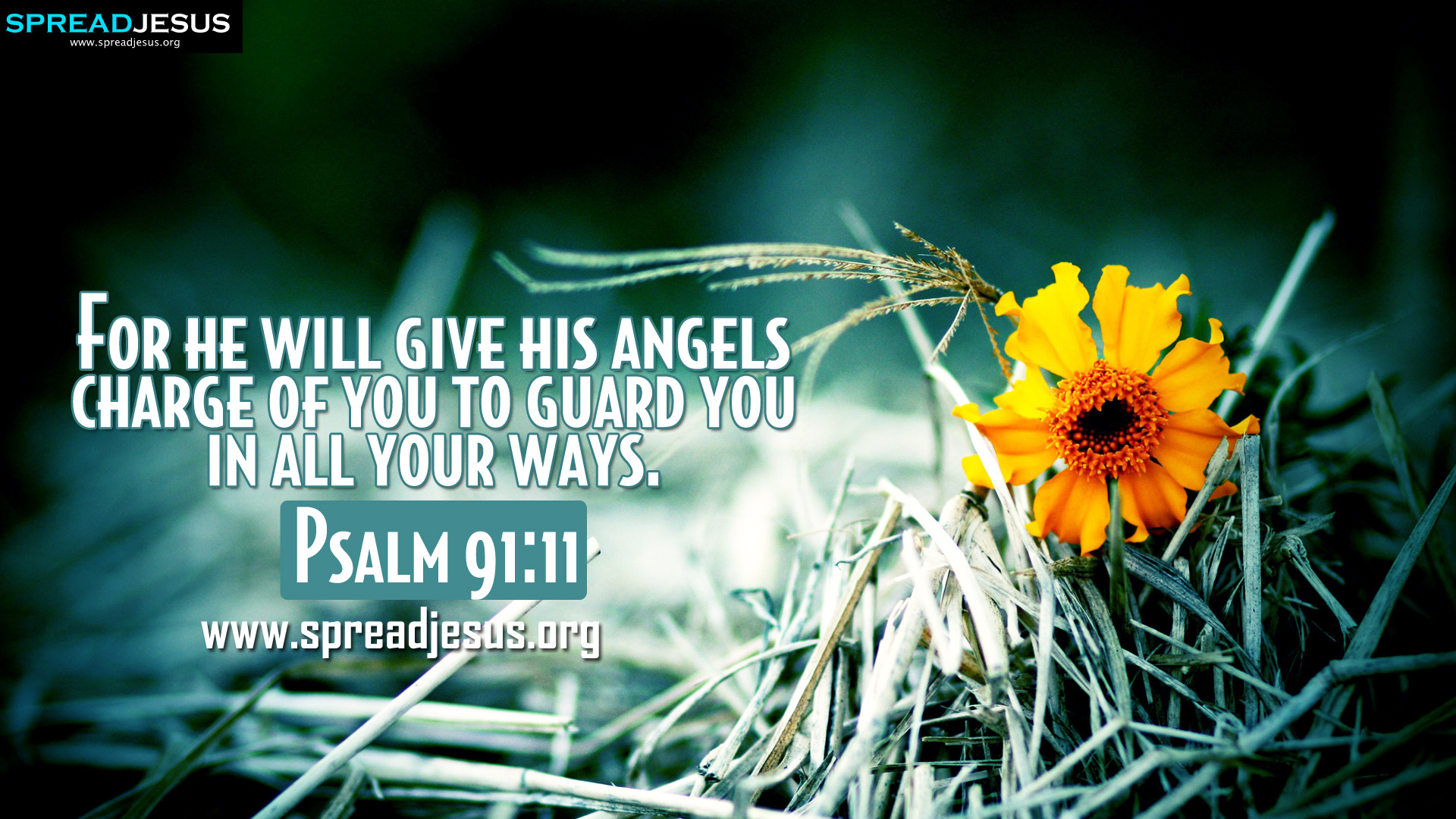 Psalm 9111 BIBLE QUOTES HD WALLPAPERS FREE DOWNLOAD For he will give 1920x1080