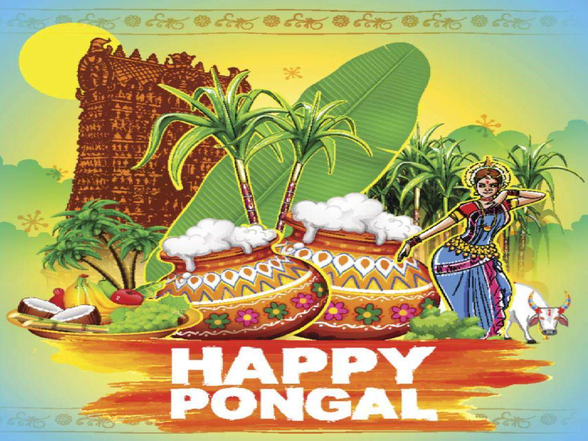 Happy Pongal 2020 Images Wishes Messages Quotes Cards 1200x900