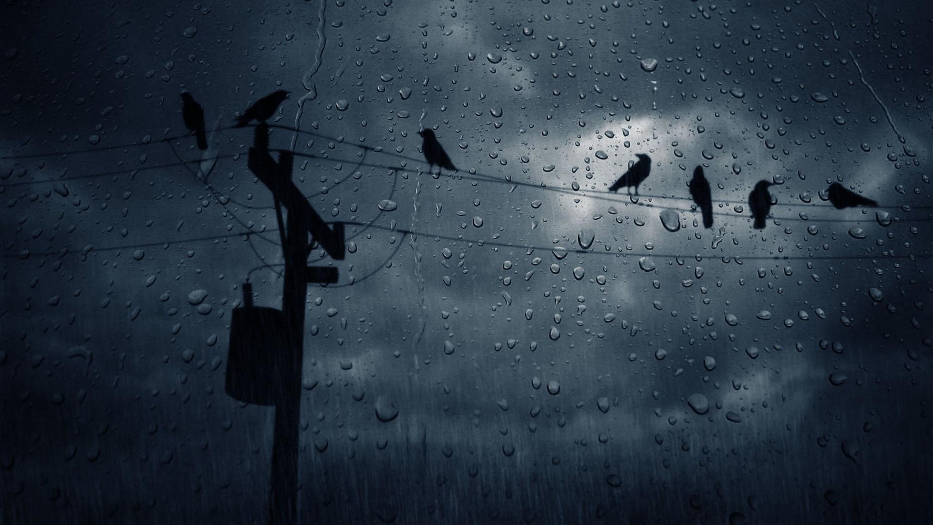 Falling Rain Wallpaper Hd Bestpsdtohtml rain 1920x1080