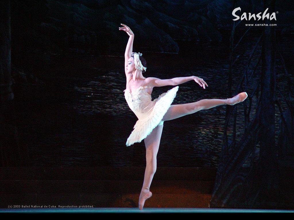 Ballet Wallpaper Ballet Wallpaper Dance Desktop Wallpaper 1024x768