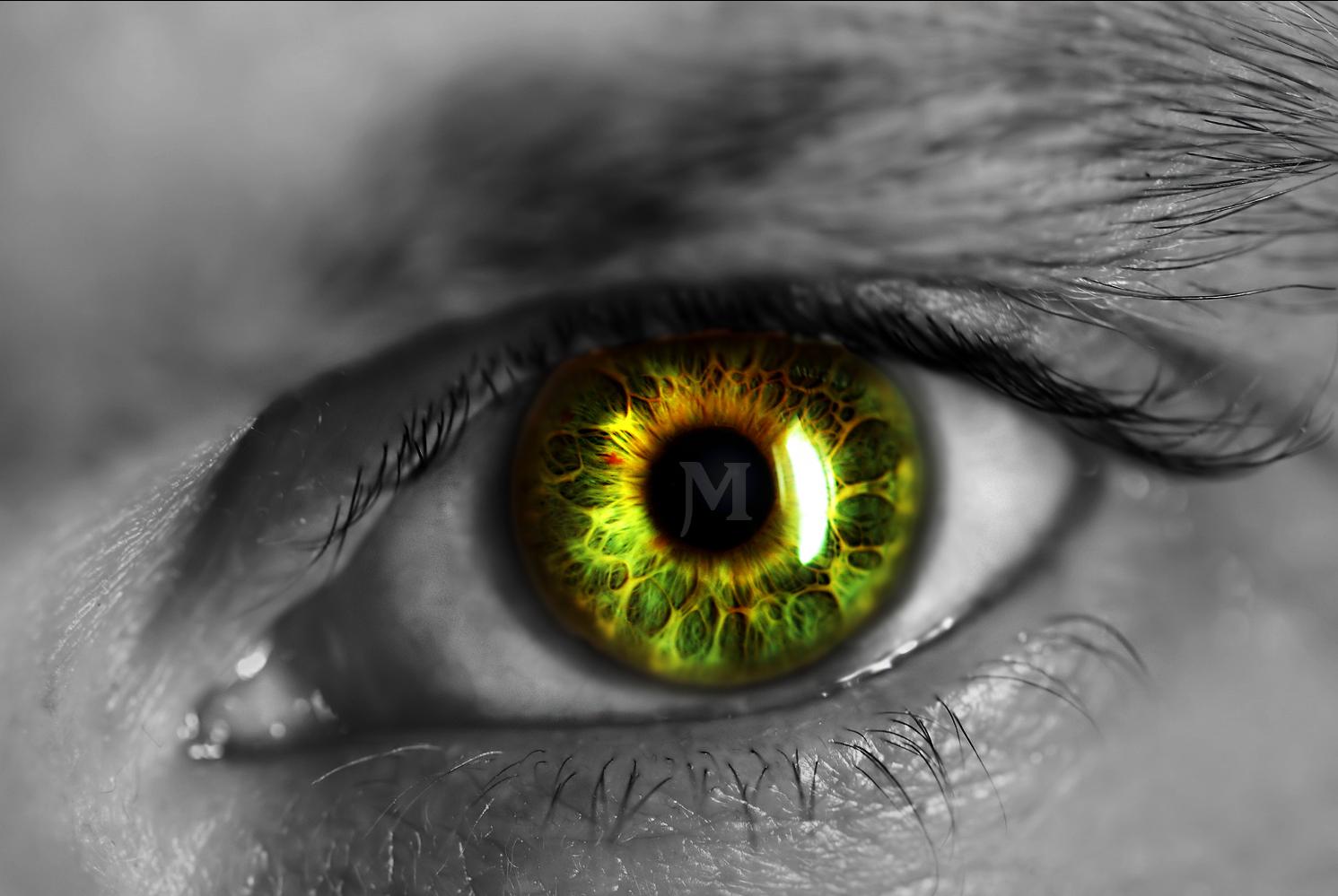 Green Man Eye Computer Wallpapers Desktop Backgrounds 1491x999 ID 1491x999
