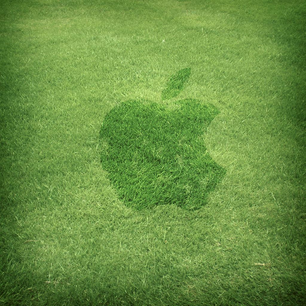 iPad Apple Grass Wallpaper 1024x1024