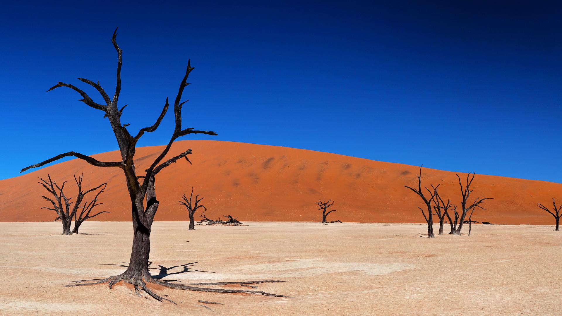 desert landscape wallpaper - photo #16