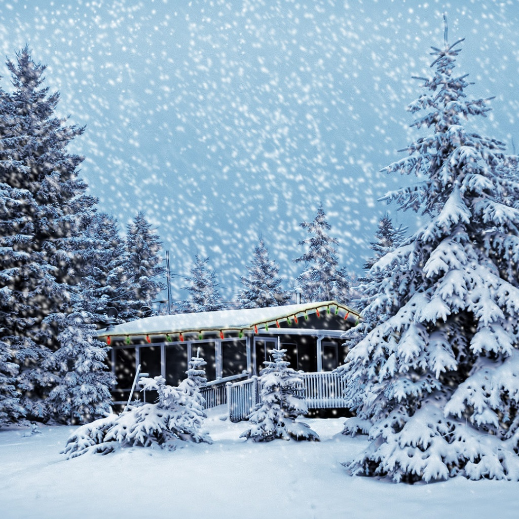 free winter snow scenes wallpaper