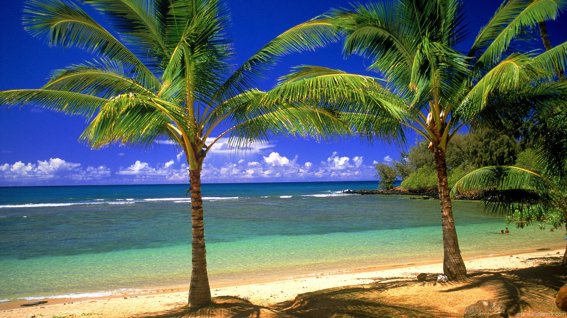 Tropical Paradise Wallpapers Hawaii Maldives Tahiti Islands Beach 1920x1080