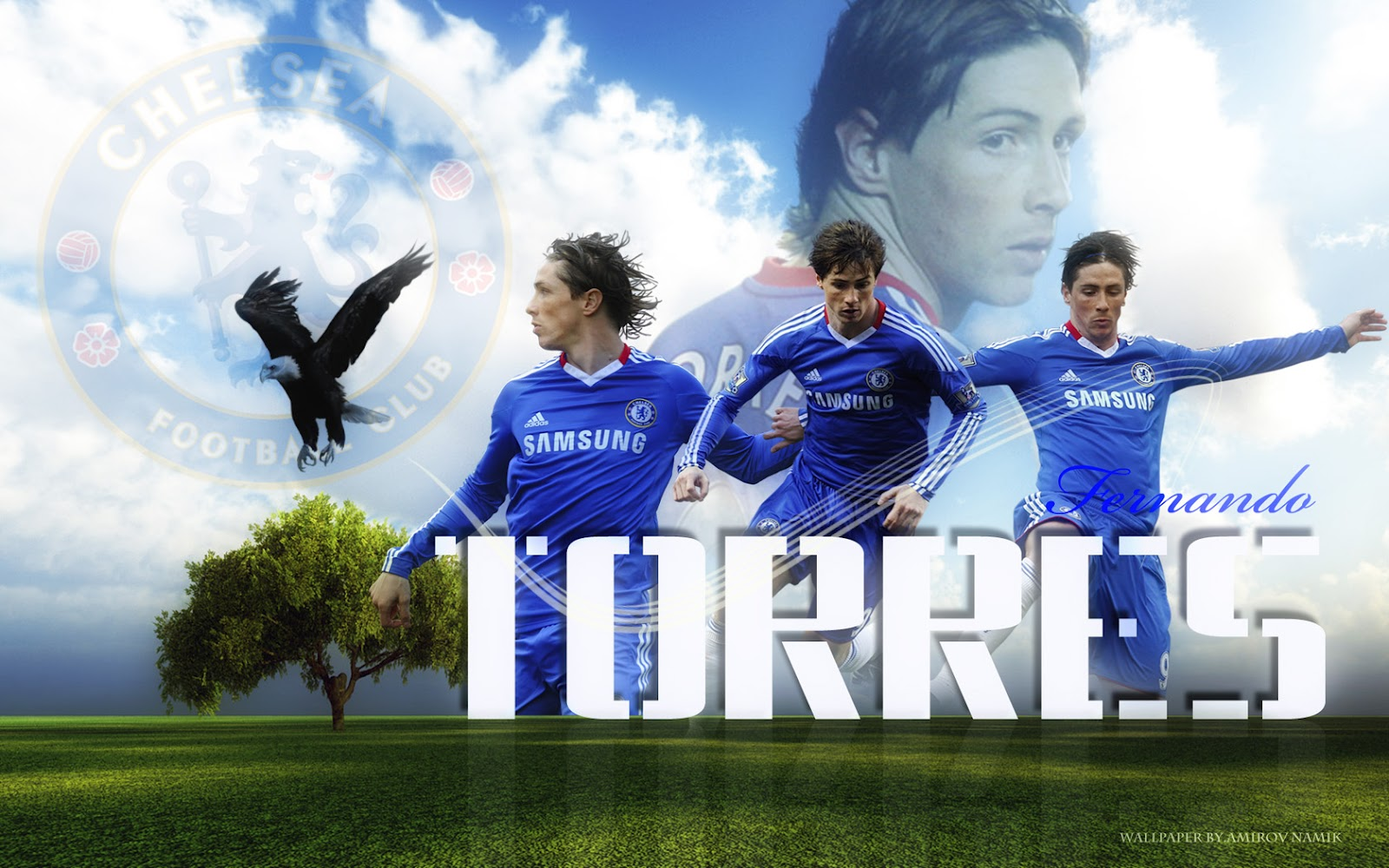 backgrounds psuperos pictures 12 wallpapers hd chelsea 2012 wallpaper 1600x1000