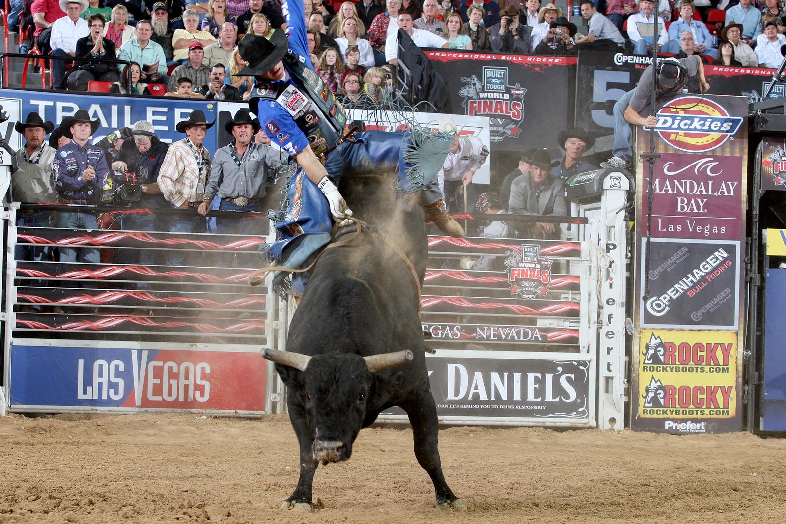 61 bull riding wallpapers on wallpapersafari - Bull riding wallpapers ...