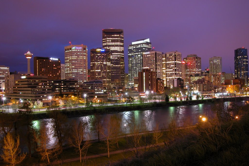 Calgary At Night From Calgary Tower HD Walls Find Wallpapers 1024x682