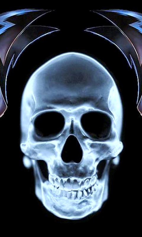 free 480X800 skull wallpaper 480x800 wallpaper screensaver preview id 480x800