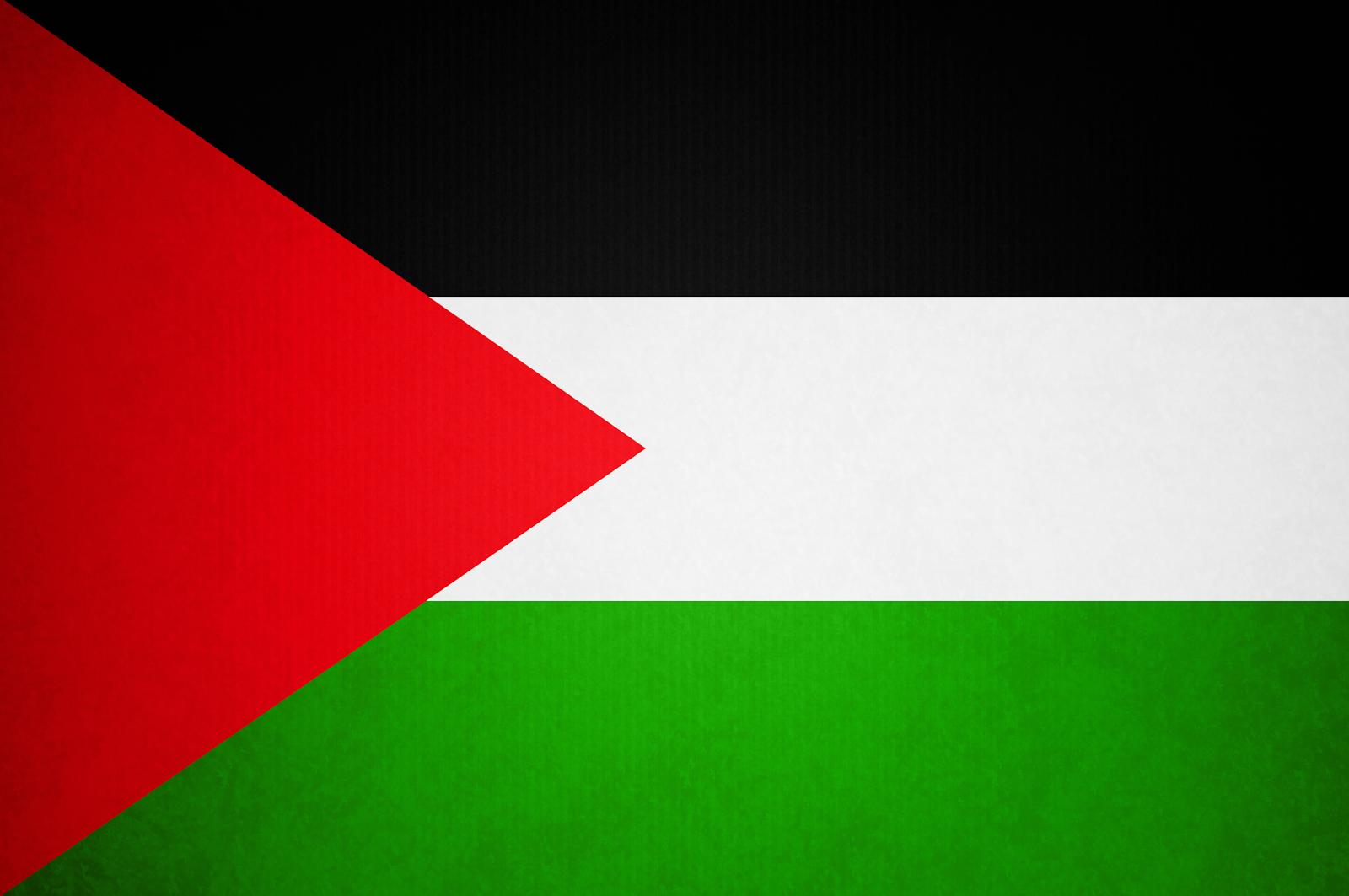Palestine flag png hd pictures 3000x4515 px Png Vectors Photos 1600x1063