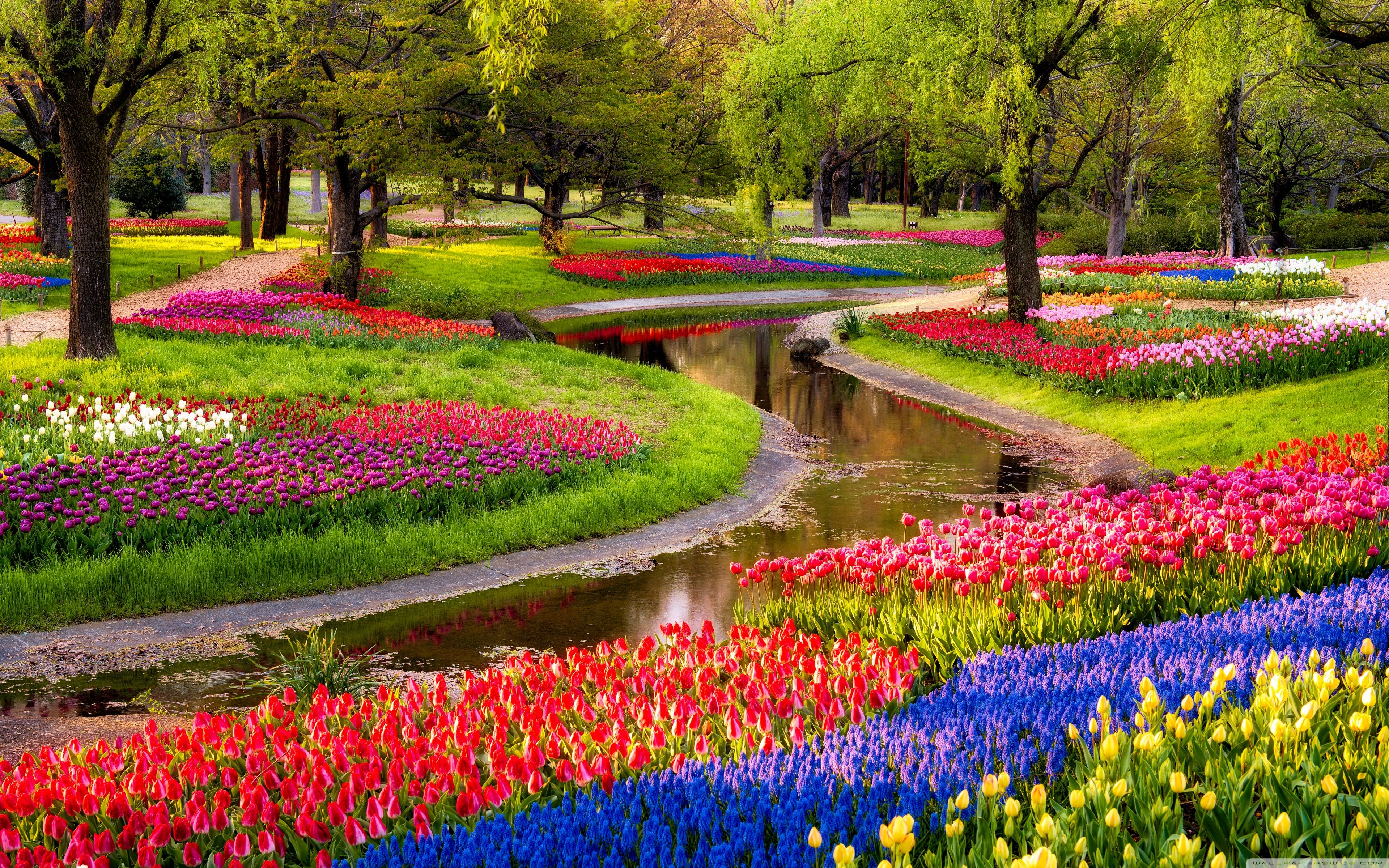 Spring Garden Wallpapers   Top Spring Garden Backgrounds 3840x2400