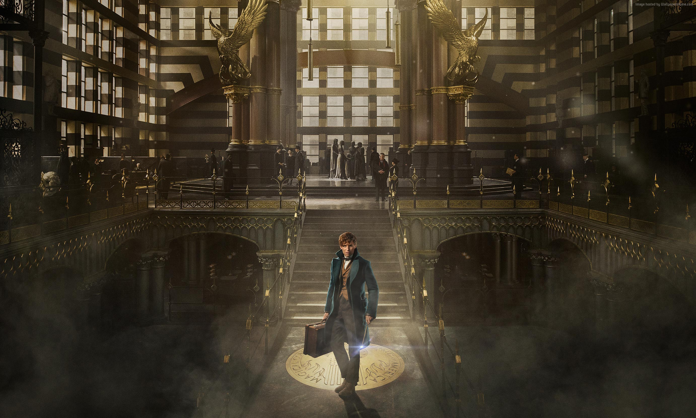 Fantastic Beasts and Where to Find Them Wallpaper 2   2764 X 1661 2764x1661