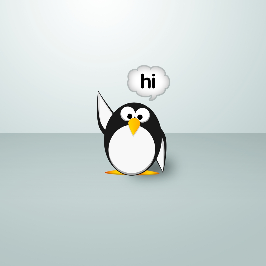 Funny Penguin Download wallpaper Gallery 1024x1024