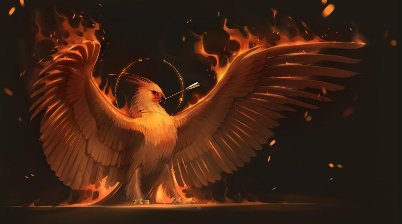 Desktop Wallpapers Birds Phoenix mythology Wings Fantasy Flame 1280x713