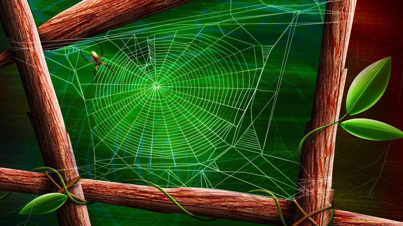 Spider web wallpaper 10657 1366x768