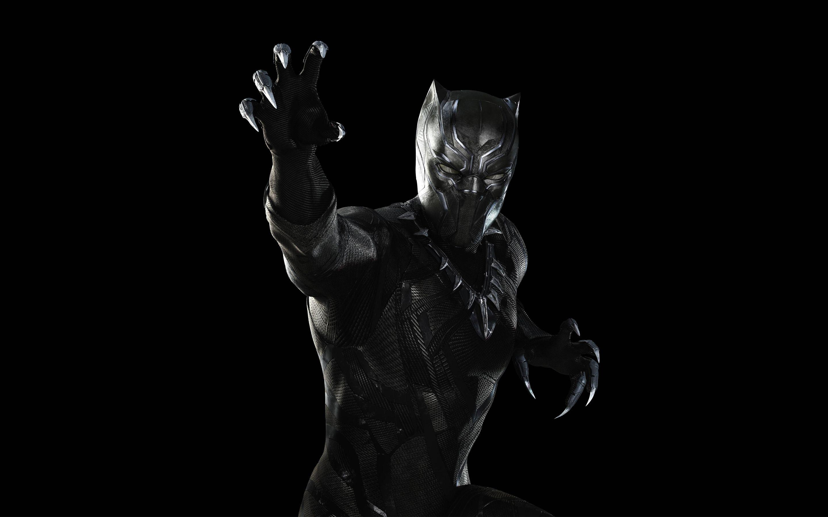 Black Panther Marvel Wallpapers 2880x1800