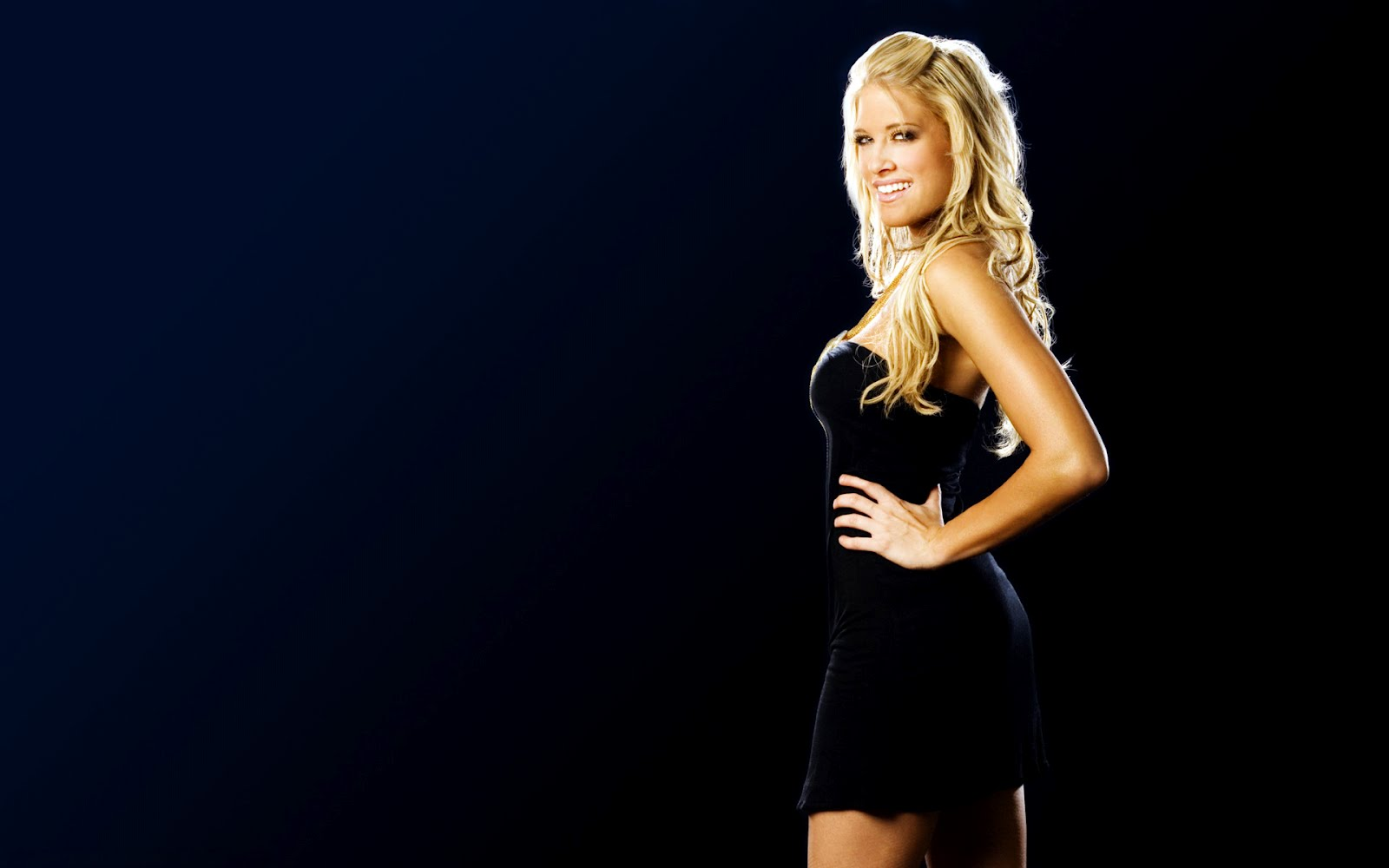 Wwe hd divas wallpapers wallpapersafari - Wwe divas wallpapers ...
