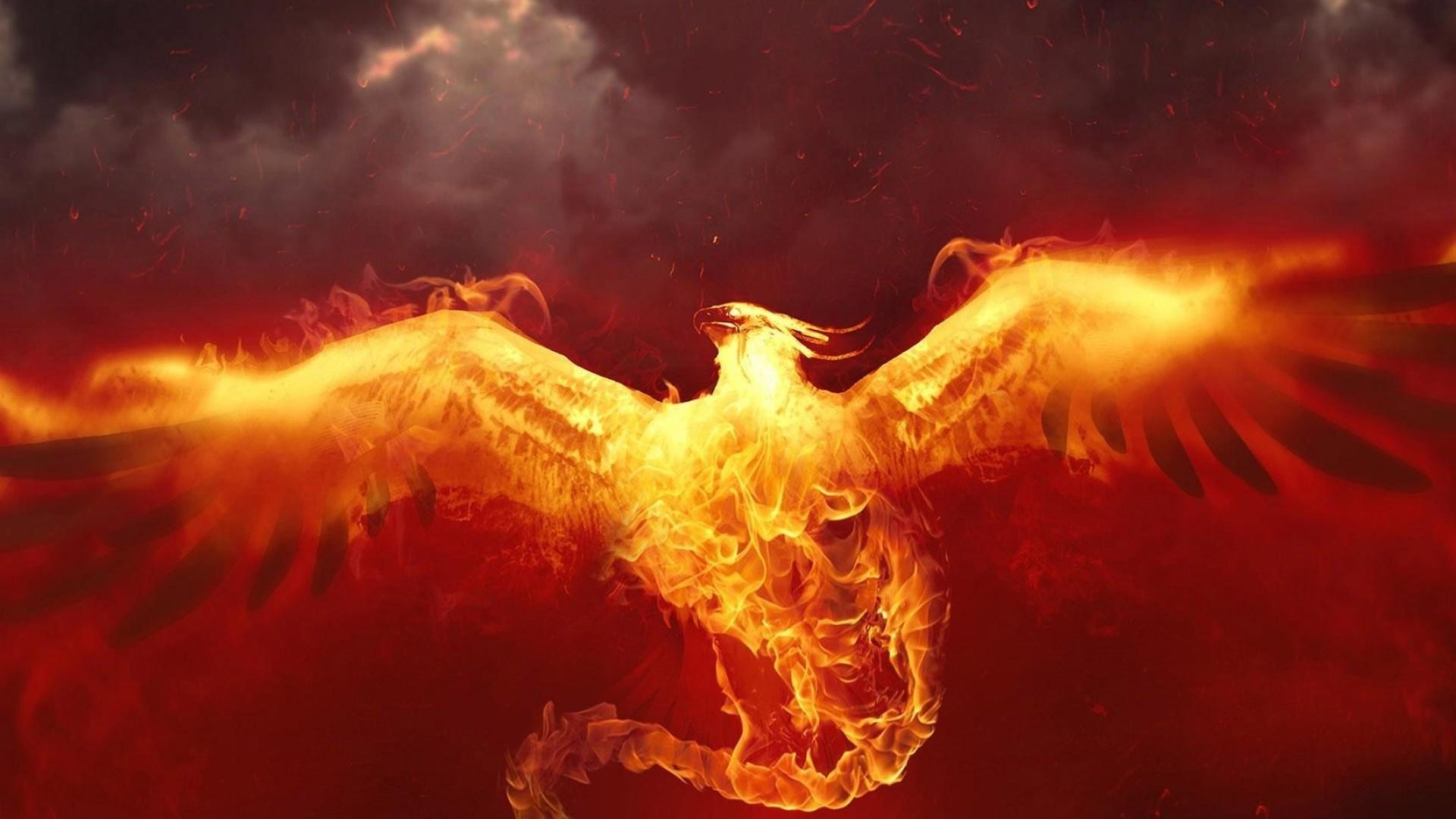 phoenix wallpaper hd - photo #17
