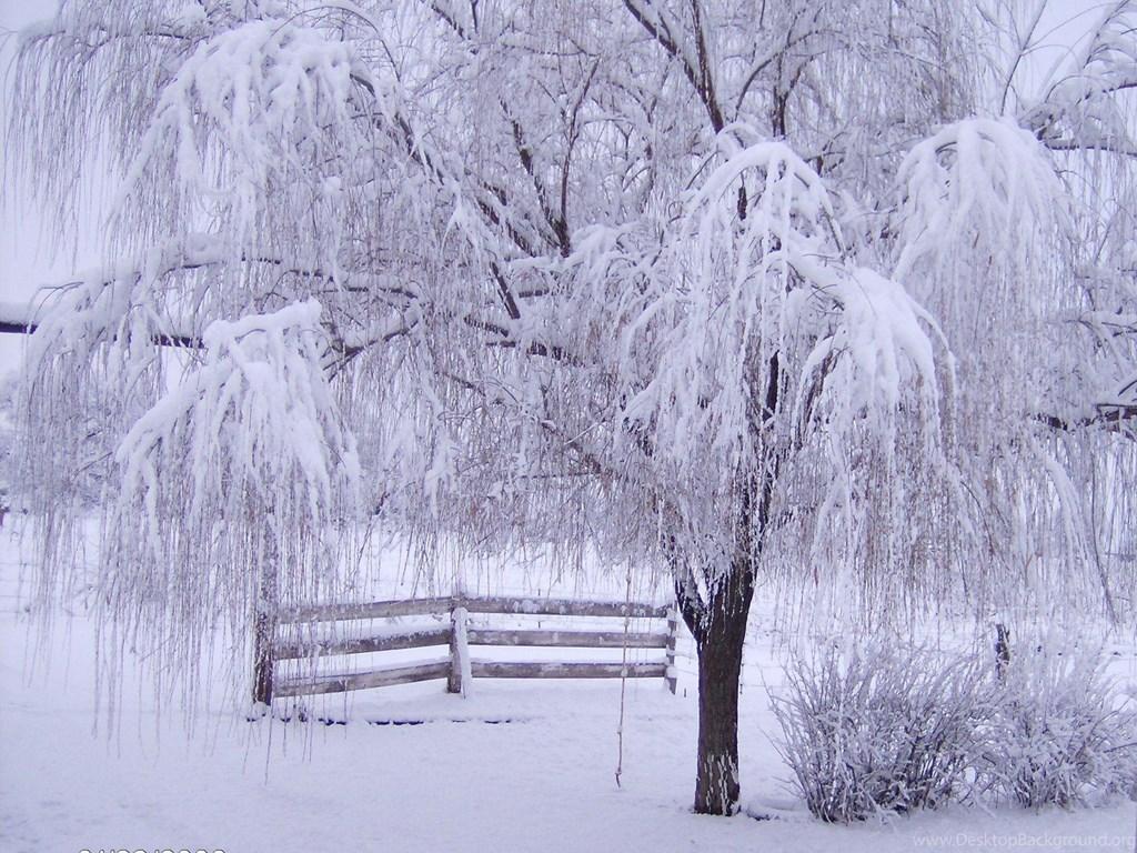 Wallpaper For Desktop Winter Scenes The Galleries of HD 1024x768
