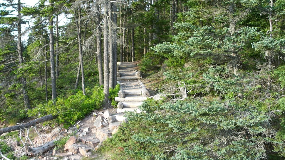 Acadia National Park Walk wallpaper   ForWallpapercom 970x547