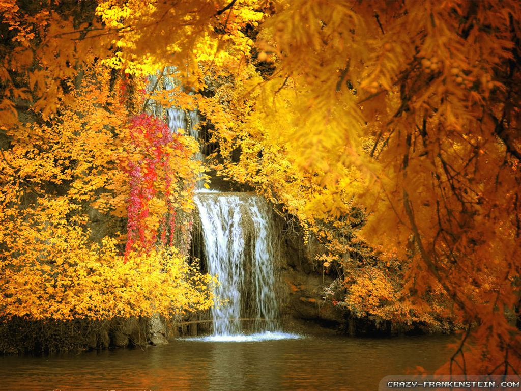 desktop wallpaper fall scenes   wwwwallpapers in hdcom 1024x768