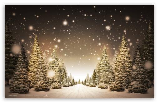 Home Holidays Christmas 510x330