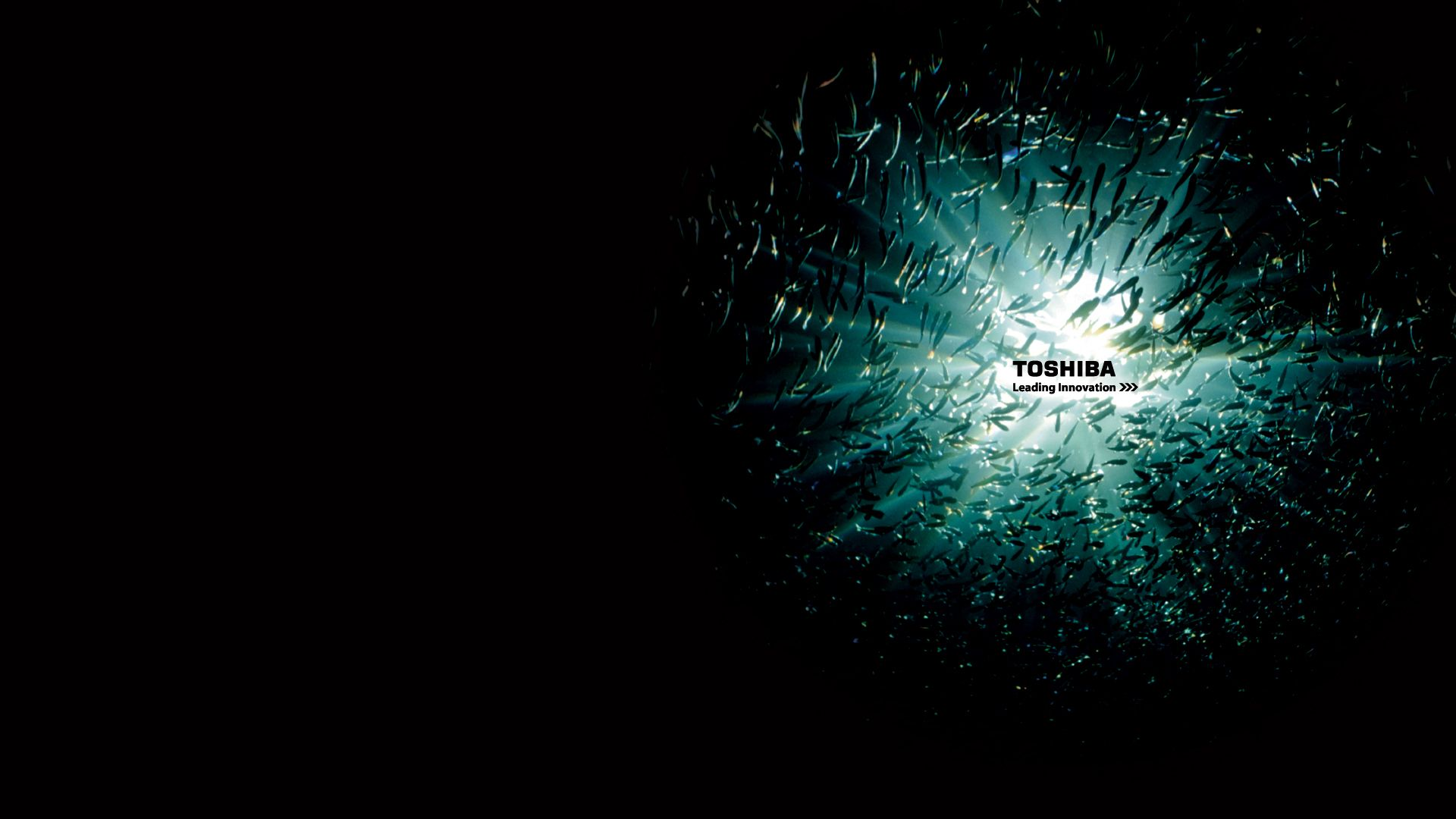 Toshiba Backgrounds Pictures 1920x1080