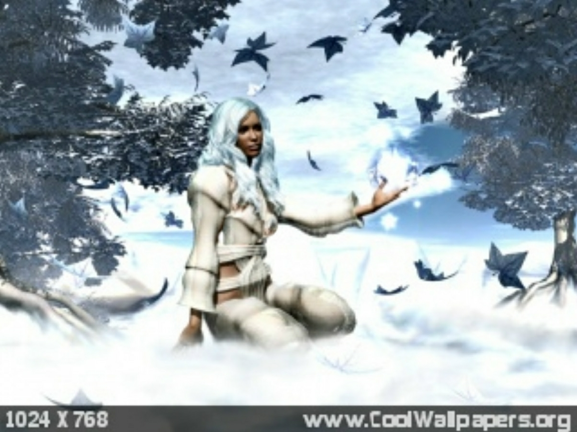 Winter Witch Desktop and mobile wallpaper Wallippo 1152x864