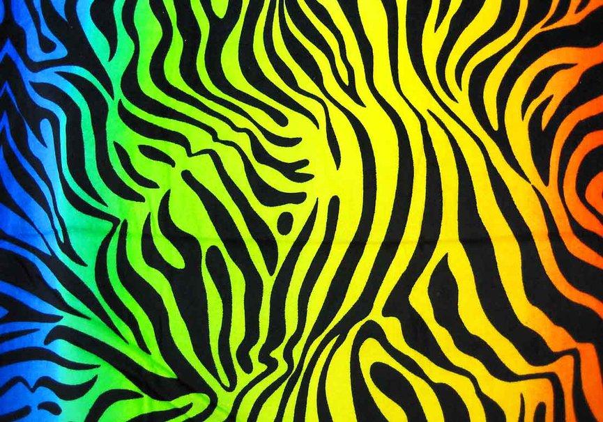 Wallpaper Zebra Stripes White Tiger Stripe Pictures 865x606