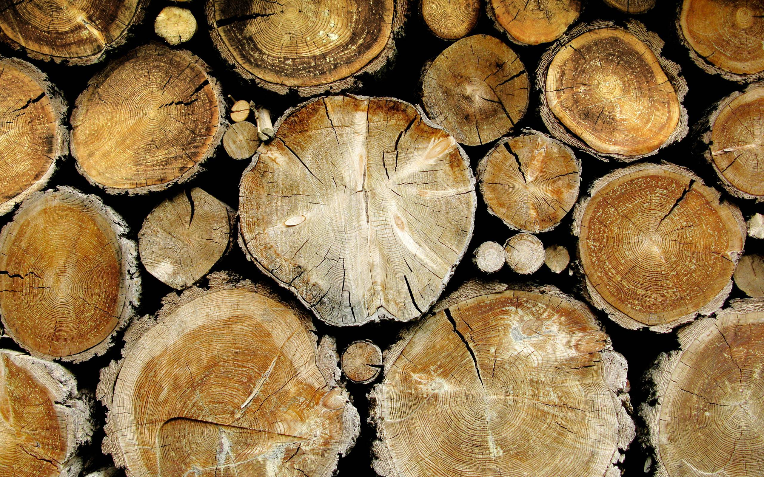 Log Cabin Look Siding