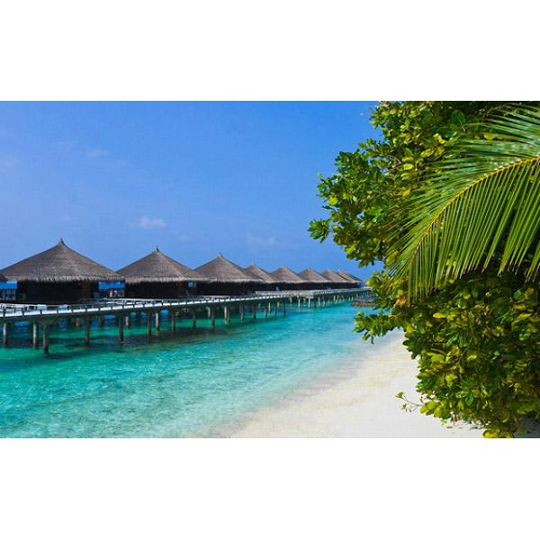 Source URL httpwwwmyhomewallpapercomwallmuralsSea   Beach2014 600x600