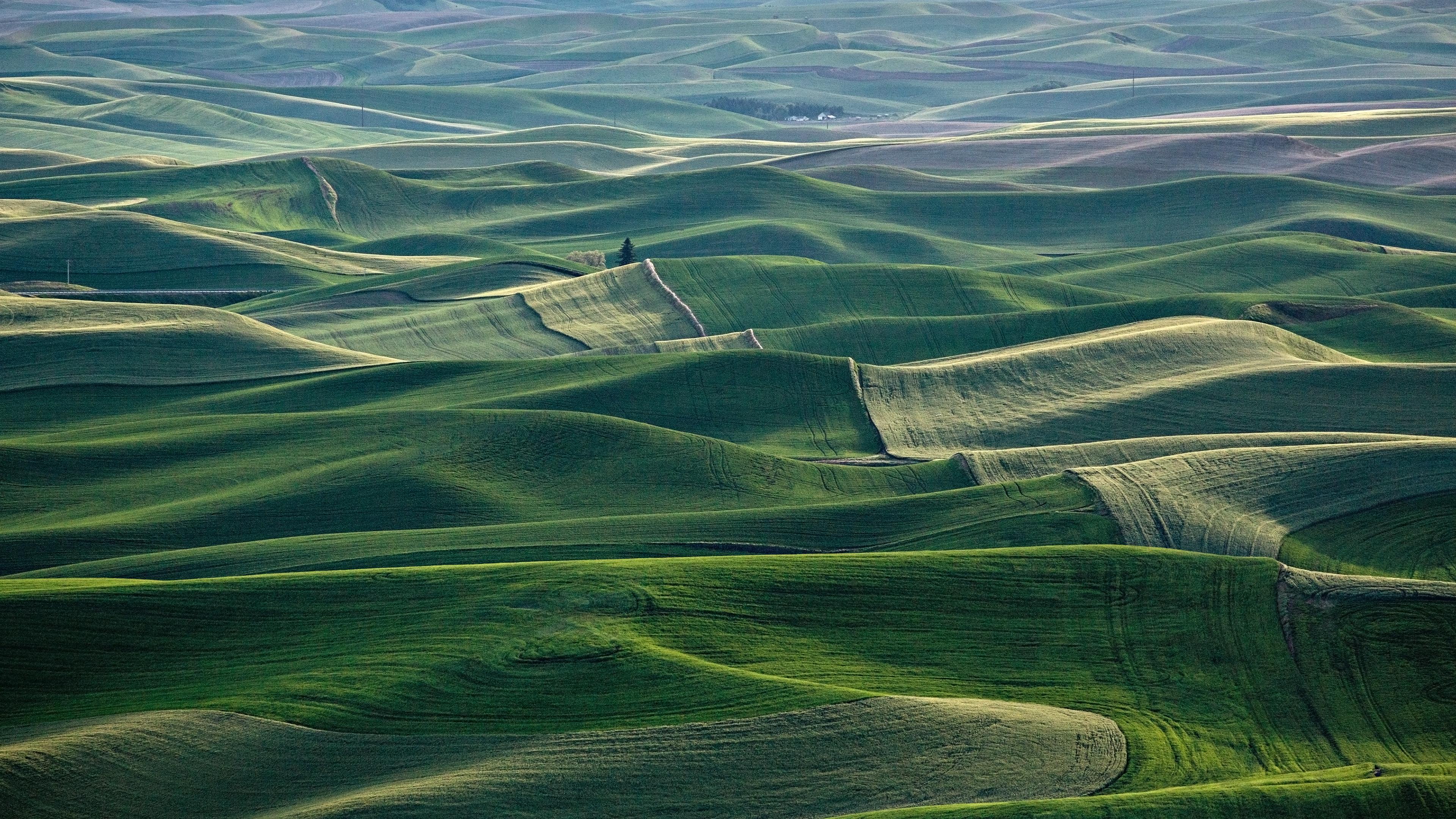 landscape fog field grass ultrahd 4k wallpaper wallpaper background 3840x2160
