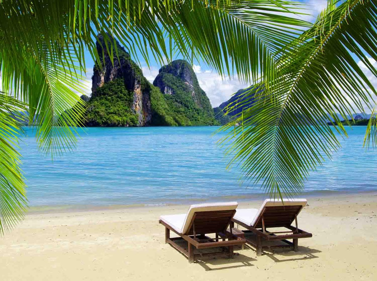 Tropical Island Wallpaper   Android Apps on Google Play 1204x900