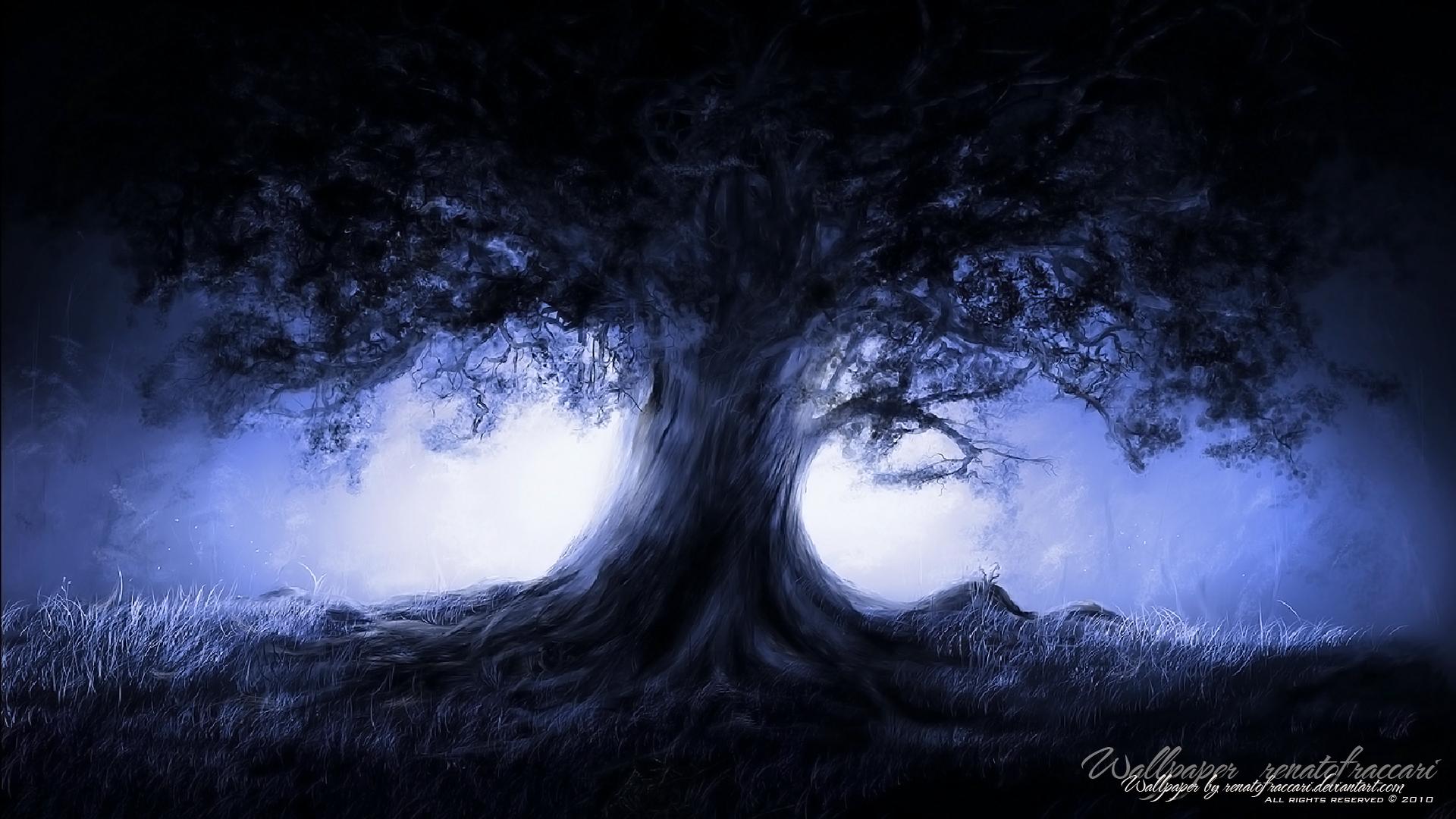 Midnight tree wallpaper background 1920x1080