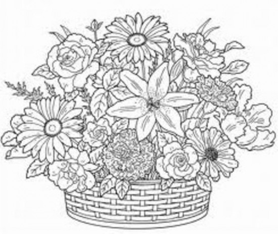 Adults Coloring Pages Coloring Sheets All About Coloring Pages 550x462