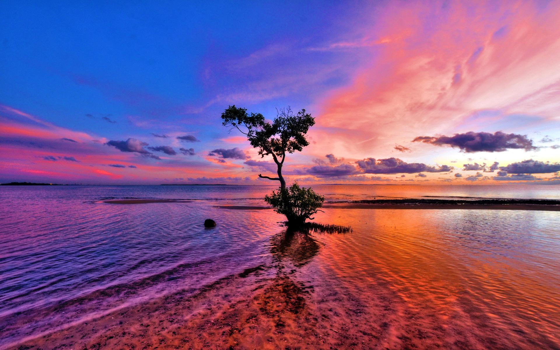 Beautiful Pink Sunset Original Beach HD wallpapers 1920x1200