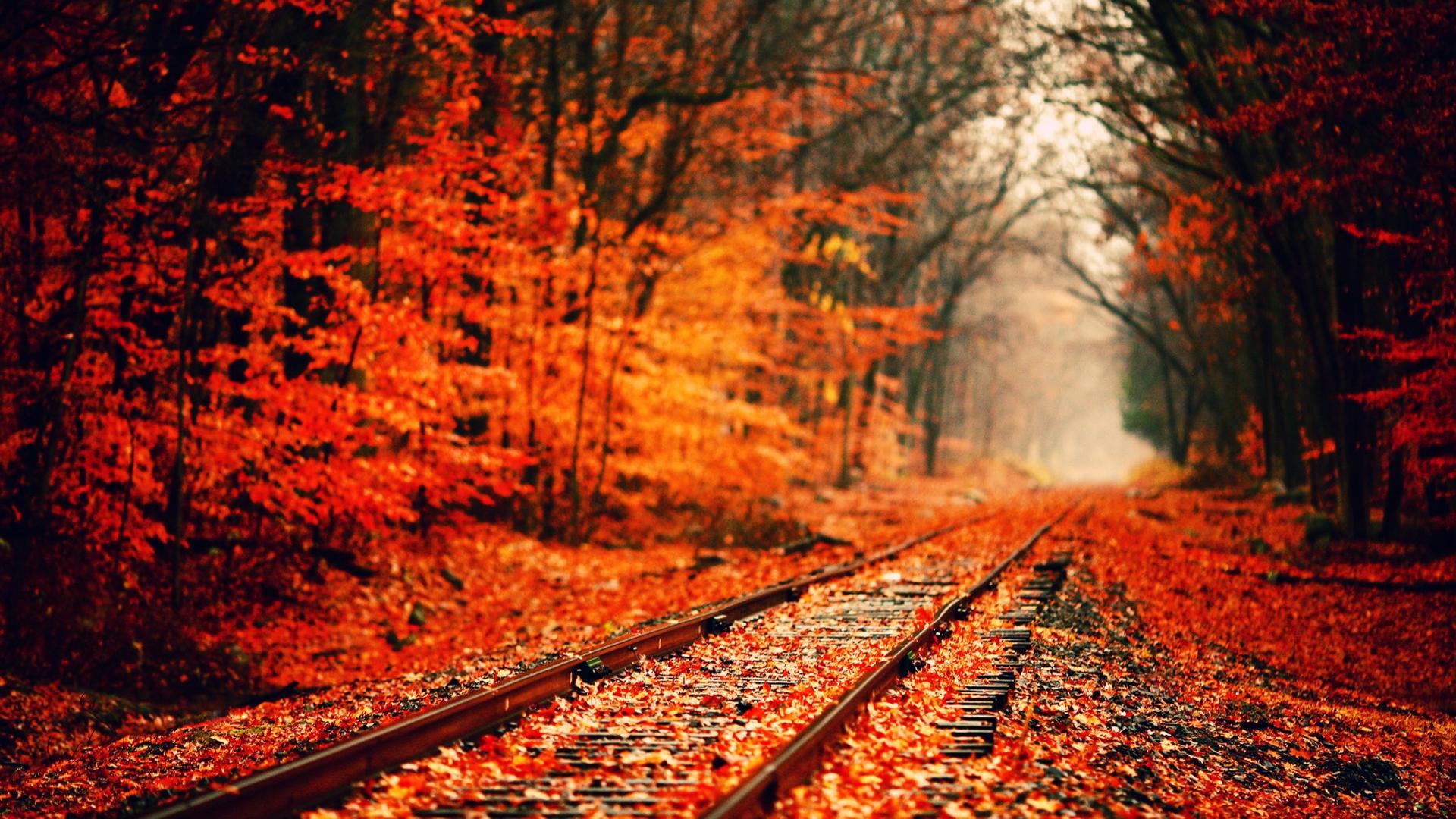 Fall Season Wallpaper Desktop Image 1920x1080
