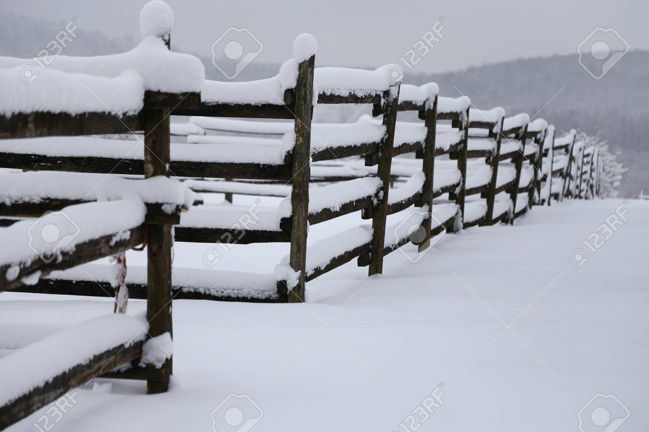 Photo Of A Fafulous Snowy Corral As A Winter Background Stock 1300x866