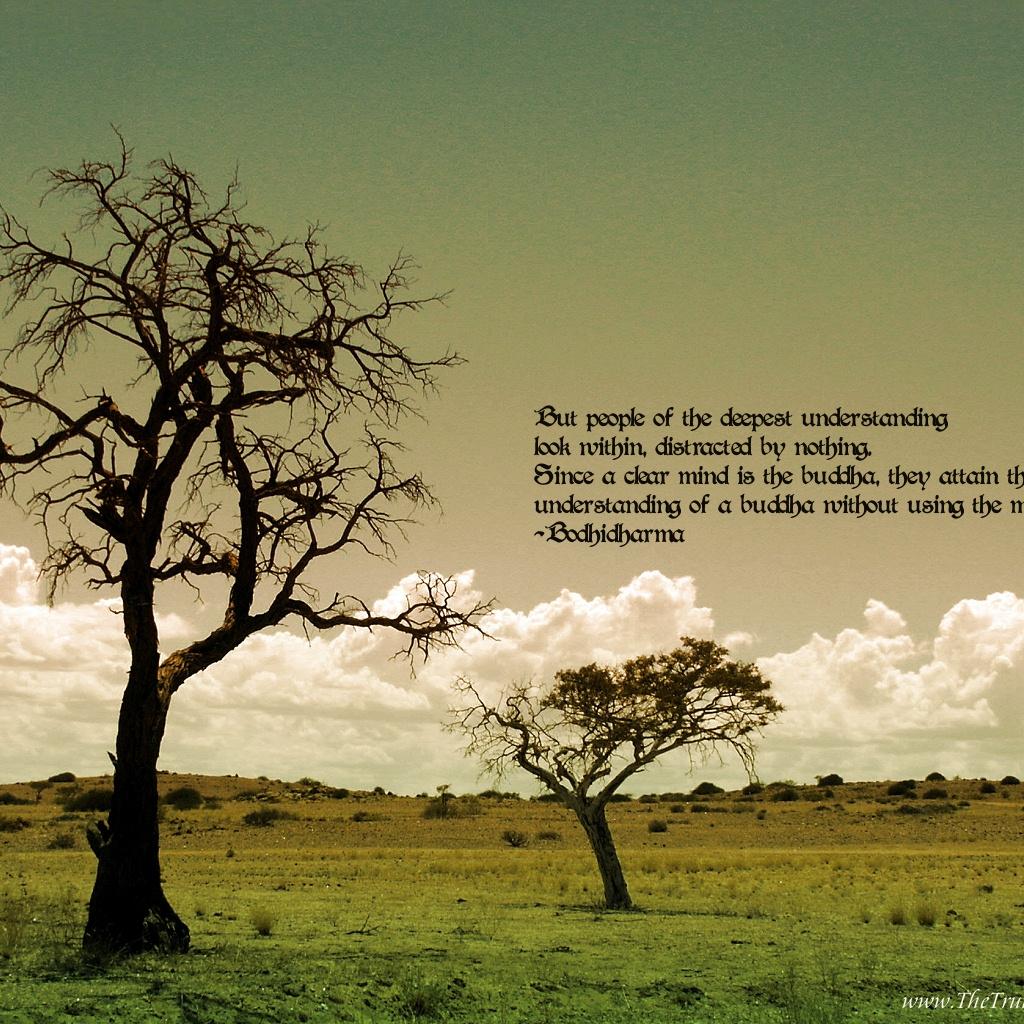 zen quote wallpapers - photo #40