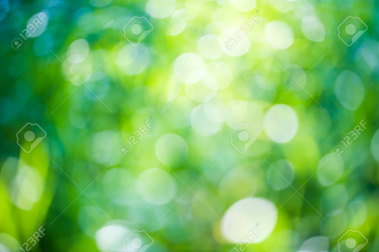Green Bokeh Natural Background Fresh Green Trees Foliage On 1300x866